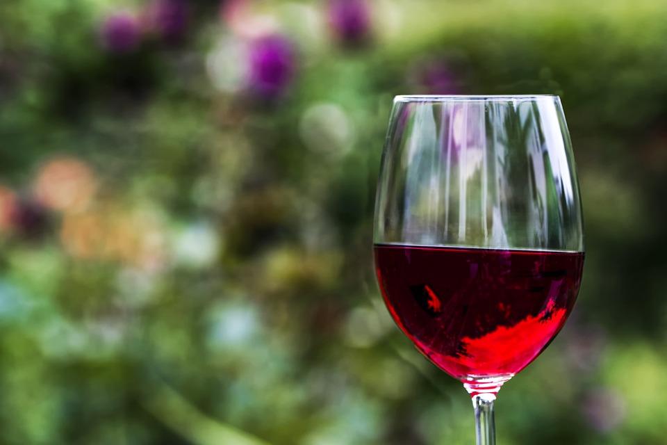 Prekvapivé výhody pitia vína z pohľadu neurovedy